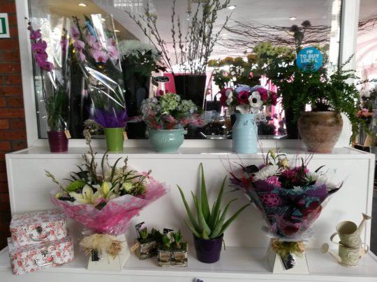 Eastbourne Florist
